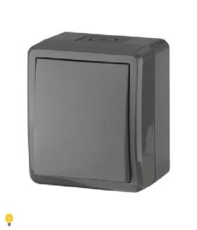 Переключатель IP54, 10АХ-250В, ОУ, Эра Эксперт, серый 11-1403-03