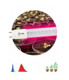 Лампа красно-синего спектра FITO-9W-RB-Т8-G13-NL FITO
