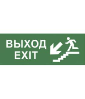 """Самоклеящаяся этикетка 200х60мм """"Выход/лестница вниз/фигура"""" DPA/DBA (5/20000) INFO-DBA-013 ЭРА"""