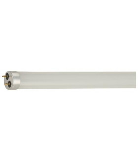 Лампа Gauss Elementary T8 12W 1000lm 4000K G13 600mm стекло LED 1/20