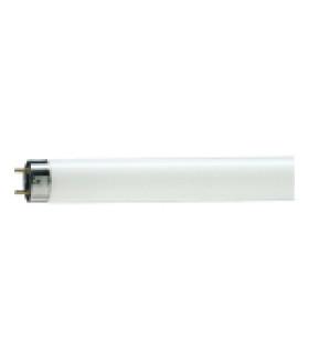 Лампа люминесцентная Philips TL-D G13 18W/33-640 SLV 815764