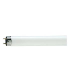 Лампа люминесцентная Philips TL-D G13 18W/54-765 SLV 815788