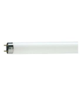 Лампа люминесцентная Philips TL-D G13 36W/33-640 SLV 815825