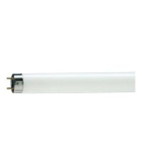 Лампа люминесцентная Philips TL-D G13 36W/54-765 SLV 815849